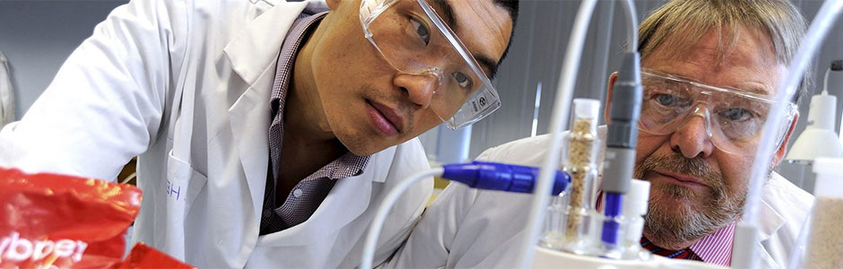 Food Science and Engineering , BSc (Hons) | Undergraduate study