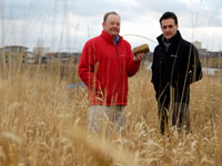Dr Richard Lord, left, with his research associate Richard Green at a brownfield reed canary grass trial site near the (River) Tees Barrage. Richard is holding a biomass briquette (a renewable alternative to fossil fuels like coal which is made from harvested grass).