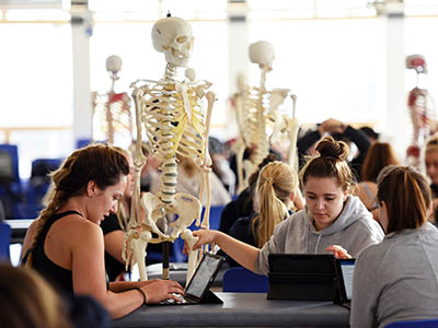 Link to Virtual placements for physiotherapy students.