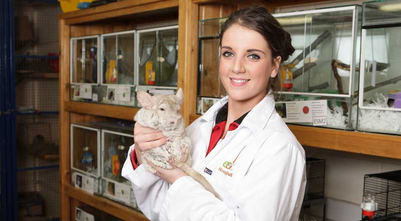 Sam Frost, a former Animal Care and Veterinary Care Assistants student at East Durham's Houghall Campus.
